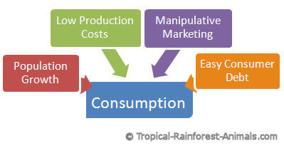 personal consumption, pollution, population growth, low production costs, manipulative marketing
