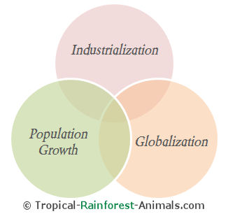 fundamental pollution causes, industrialization, population growth, globalization