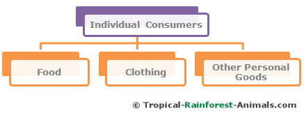 individual consumers, pollution